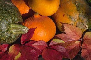 autunno, i frutti più buoni
