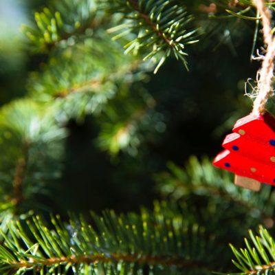 Doni di Natale, quanto conosci i tuoi cari?