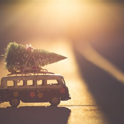 Natale 2019 un van con un albero