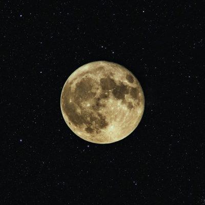 Settembre, le previsioni zodiacali di Kelly Ardens